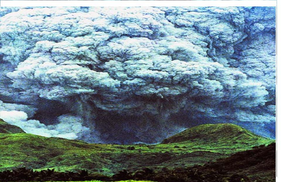 Attachment Stormy.jpg