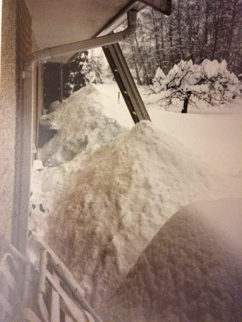blizzard 1996 victoria BC